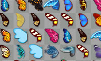 Schmetterlings-Kyodai